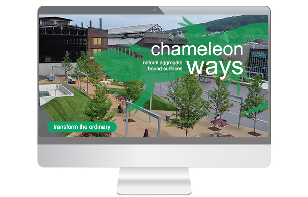 Chameleon Ways Lunch & Learn